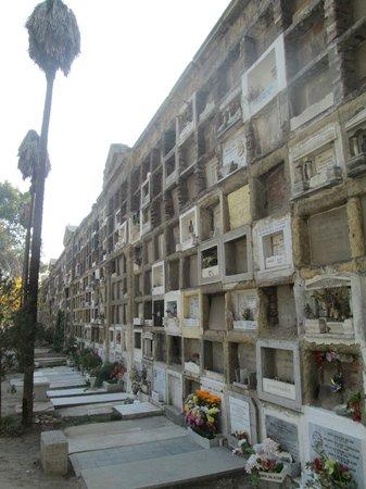 Tour Nocturno Cementerio General: ...