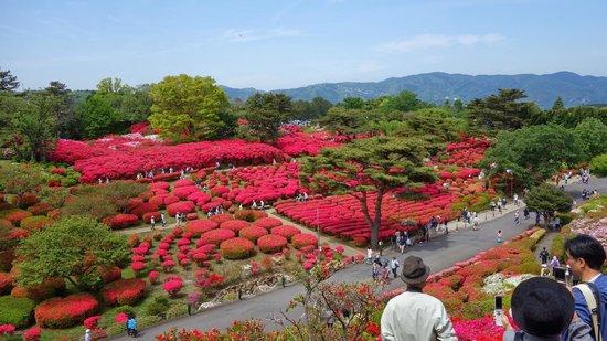 Komuroyama Park: 高台から