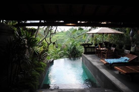 Bidadari Private Villas & Retreat: pool