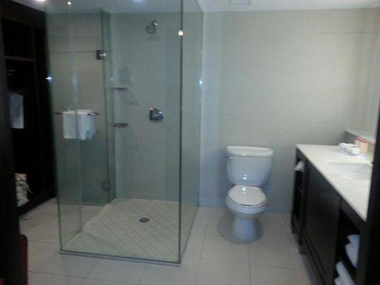 The Condado Plaza Hilton: Nice modern and spacious bathroom