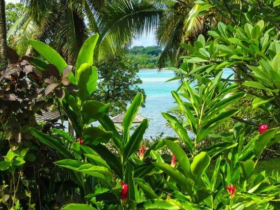 Warwick Le Lagon Resort & Spa, Vanuatu : Garden in frontLagoon. View from resort garden of Restaurant