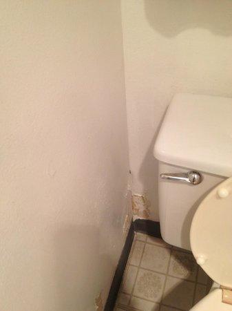 Grand Canyon Caverns Inn: Bathroom needs some help