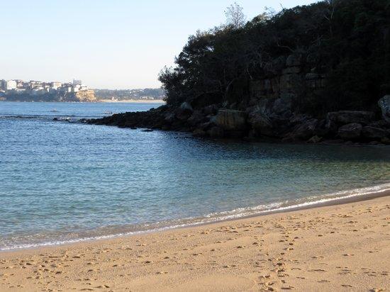 Shelly Beach : small & smiple