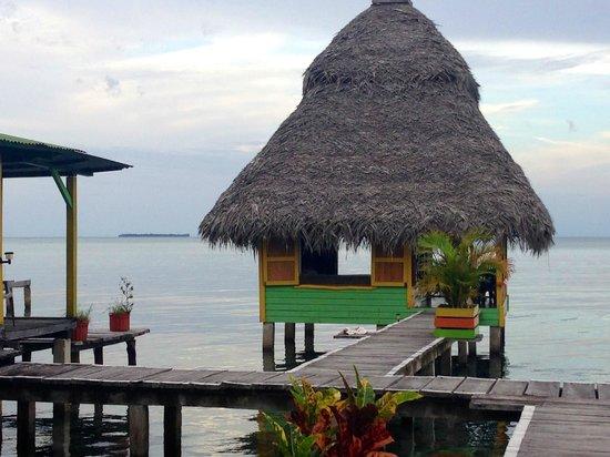 Coral Cay Cabins: Cabin