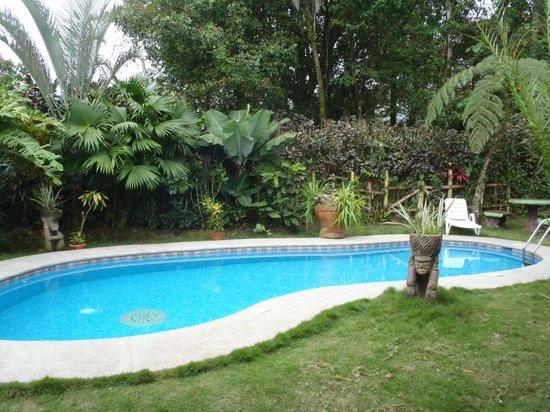 Hotel Vagabondo: Tranquil pool