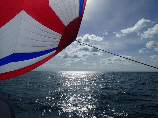 Big Mama Sailing: On our way back