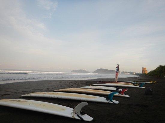 Tortuga Surf School: Jaco Beach