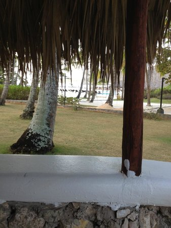 Viva Wyndham Dominicus Beach: From Room