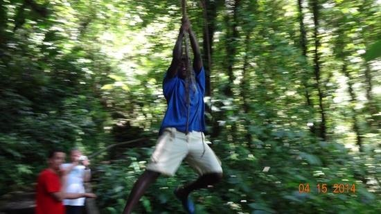 Nature Isle Explorer Day Tours: Our guides tarzan impression at the waterfalls