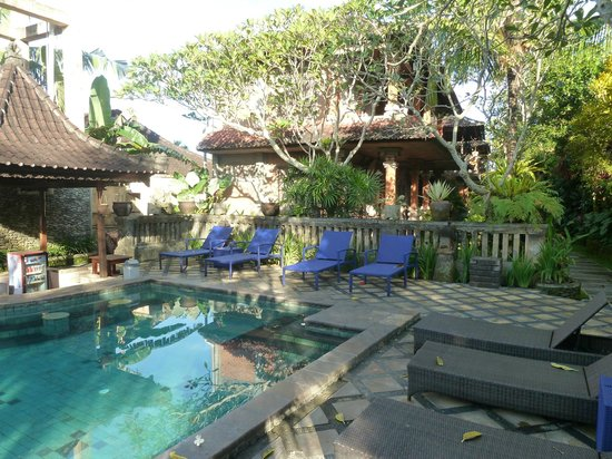Ubud Bungalow: Poolside