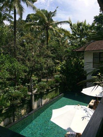 Villa Saraswati: View from our Lotus room.
