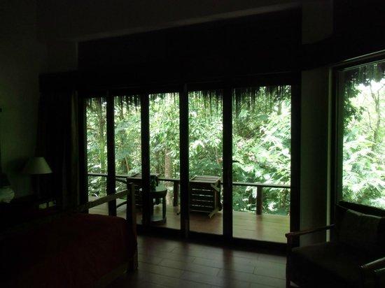 East Kalimantan, Indonesien: Balcony from standard room