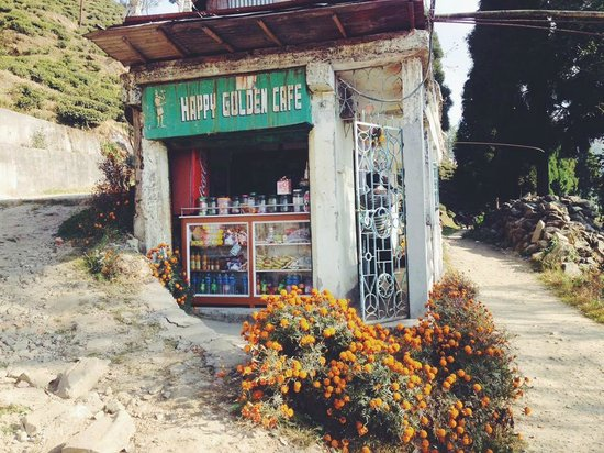 Happy Valley Tea Estate: The nice little cafe on our way to the tea factory, within the plantation.