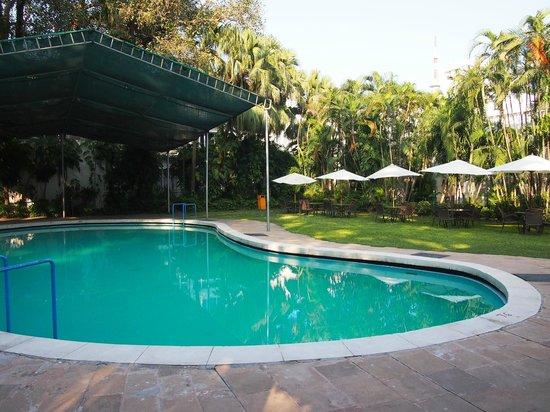 Hotel Clarks Varanasi: Pool Area
