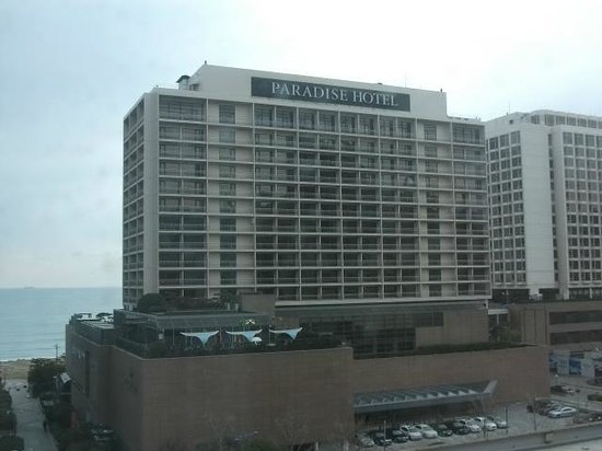 Paradise Hotel Busan : Paradise