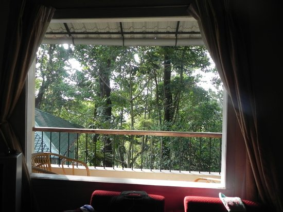 Blue Bells Valley Resort: View from room