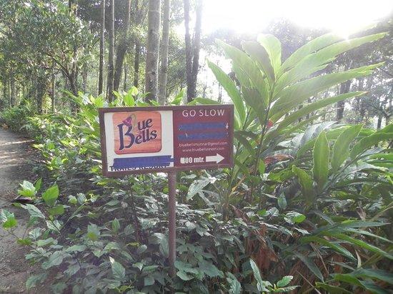 Blue Bells Valley Resort: way to go!!!