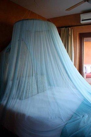 Rancho Pescadero : love the net!