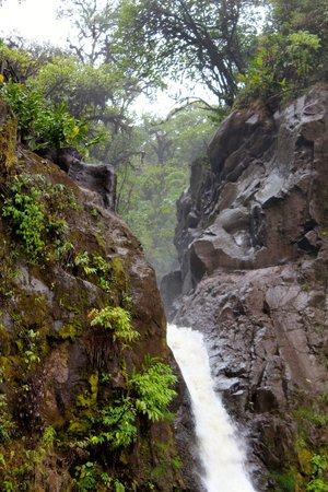 Go Tours Costa Rica - Day Tours: Waterfall