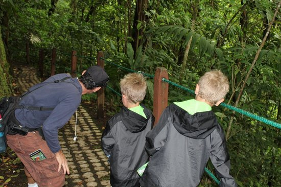 Go Tours Costa Rica - Day Tours: Arenal Rain Forest