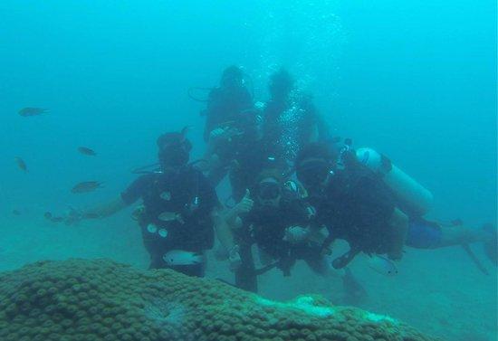Ihasia Diving Koh Tao : Diving