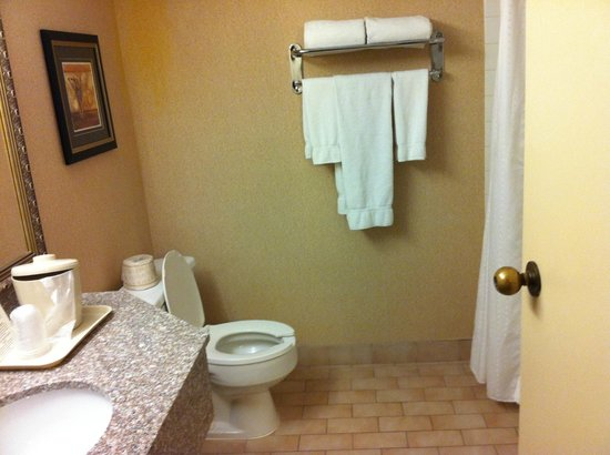 Holiday Inn Express Toronto East: Bathroom