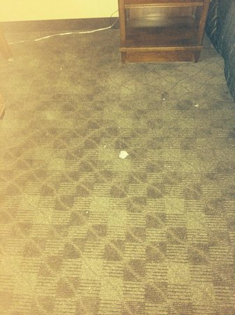 Crowne Plaza Little Rock: Dirty floor in ,my first room