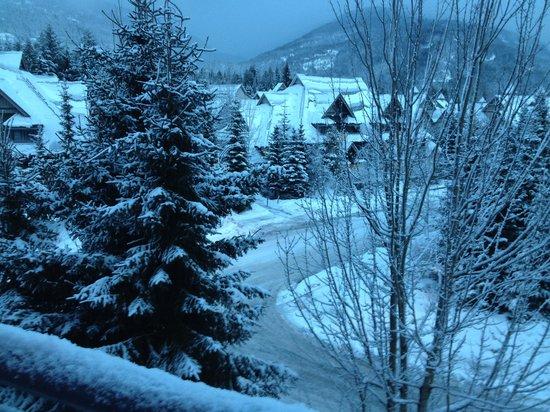 Alpenglow Lodge: Winter wonderland