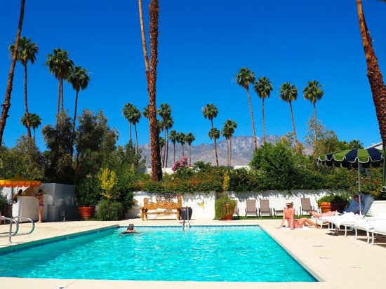 Parker Palm Springs : Family pool