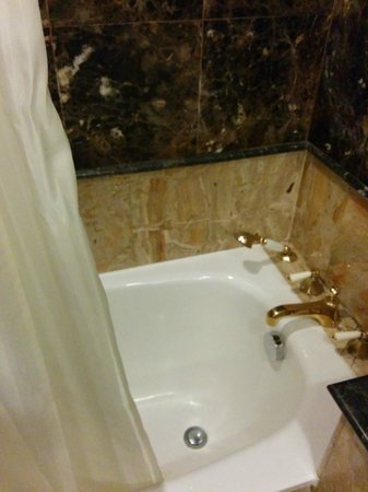 Goodwood Park Hotel: I hate a bath with a shower curtain