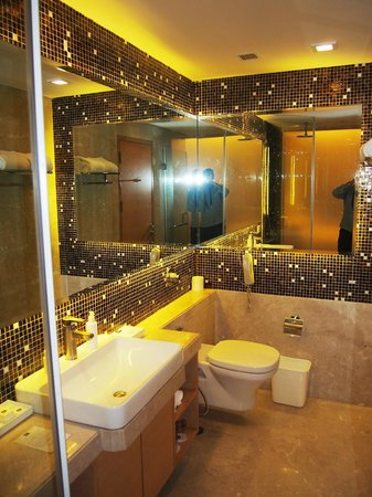 The Metropolitan Hotel & Spa New Delhi: Bathroom