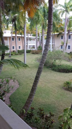 ClubHotel Riu Merengue: The garden