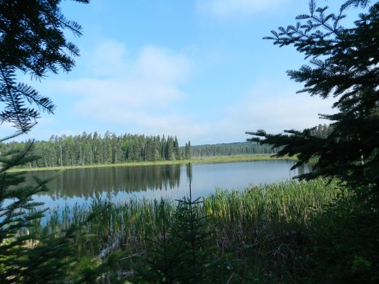 White Lake Provincial Park: One of the side lakes you can find by taking some of the awesome trails.