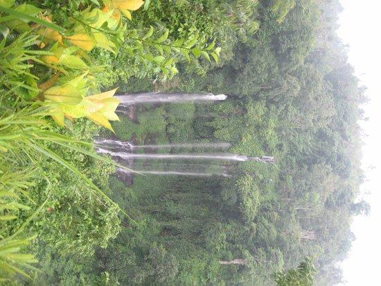 first view of Sekumpul Waterfalls
