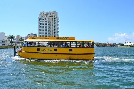Intracoastal Waterway: Ft.Lauderdale, 2014