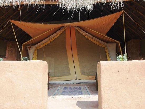 Reggie's Camel Camp: tent