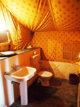 Reggie's Camel Camp: Bathroom