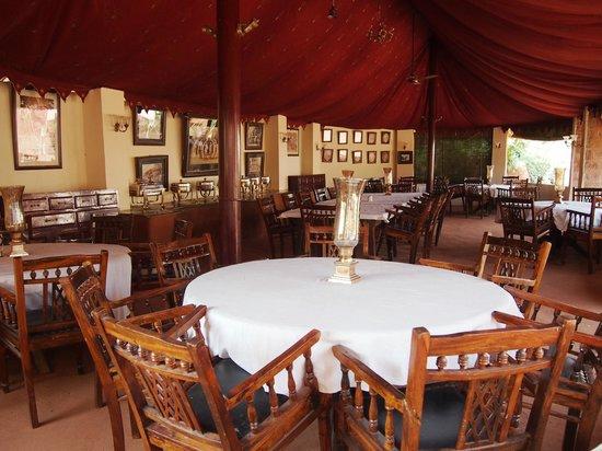 Reggie's Camel Camp: Outside Dinner