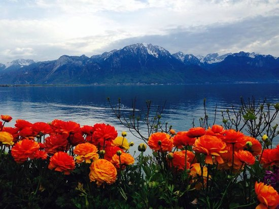 Eurotel Riviera Montreux : view from my room