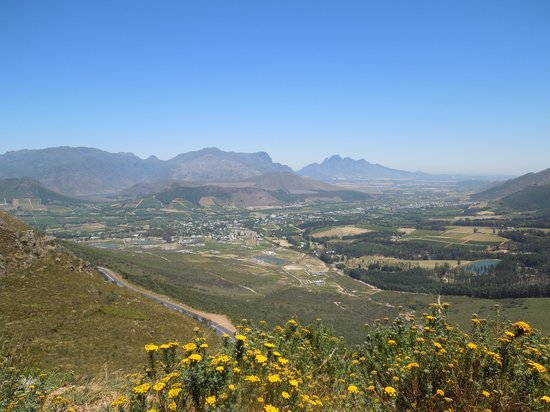 Afrikaans Language Monument: Wine country is gorgeous