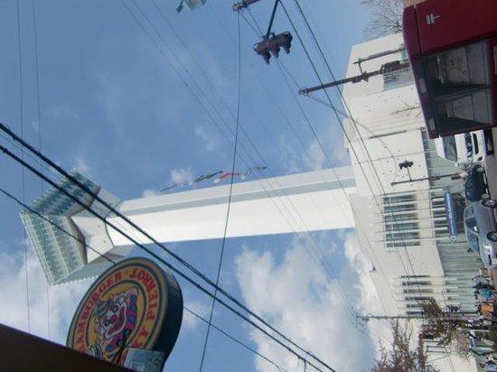 Lucky Pierrot Goryokaku Parkmae: お店の前から撮ったタワー