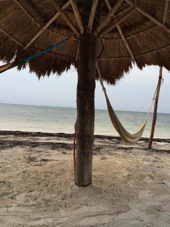 Hotel Maya Luna : Palapa con su hamaca en la playa.