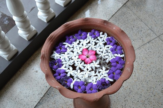 Leijay Resort : flower bowls