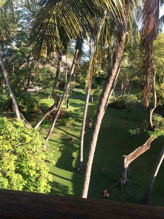 Prama Sanur Beach Bali : View from our room