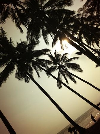 The Chandi Boutique Resort & Spa: Chandi Boutique Beach Resort