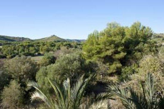 Fonda Las Palmeras : Beautiful landscapes!