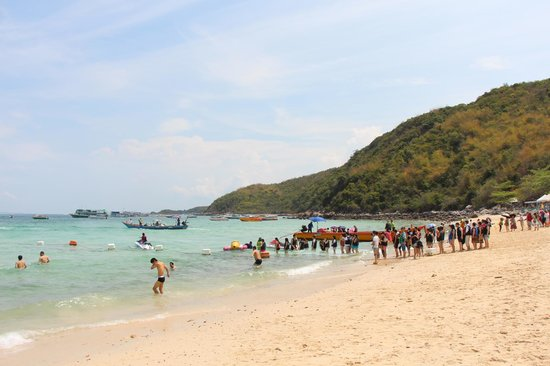 Nova Platinum Hotel Pattaya: Пляж на острове Ко Лан (10 минут пешком до порта и 20 минут на катере)