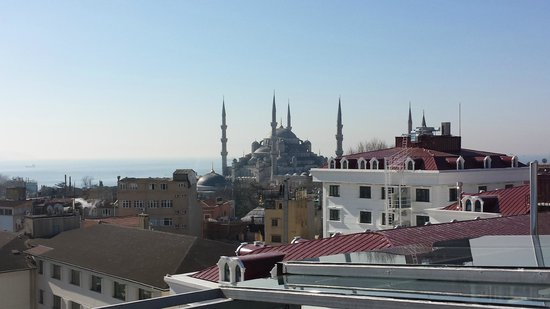 Adamar Hotel : Mosquée bleue vue de la terrasse