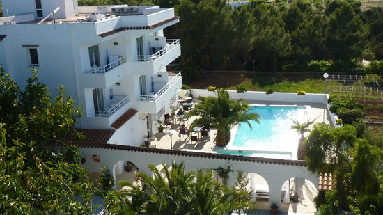 Sunset Oasis Ibiza : oasis