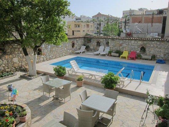 Hotel Nazar: Pool side.